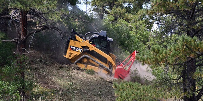 Forest and Land Clearing Services Texas